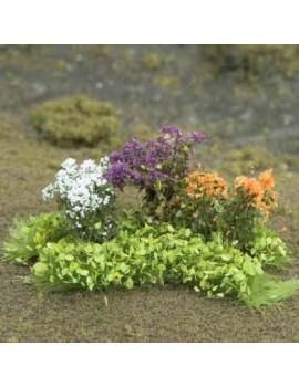 Magenta Flowers