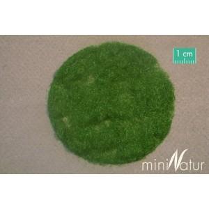2mm Summer Grass Flock