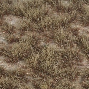 Desert Two Colour Grass Tufts