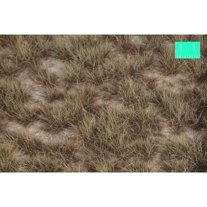 Desert Two Colour Grass Tufts