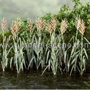 Reeds 1:45